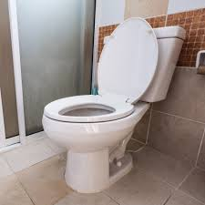 Toilet Drain Cleaning